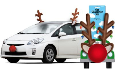 Reindeer Car Kit