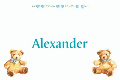 Teddy Bears with Blue Custom Baby Shower Thank You Note