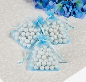Robin's Egg Blue Organza Wedding Favor Bags 24ct