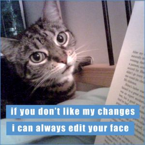 Edit Your Face Lolcats Magnet