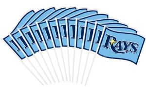 Tampa Bay Rays Mini Flags 12ct