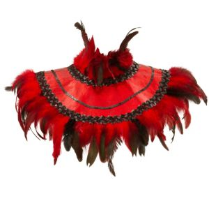 Fire Bird Feather Collar