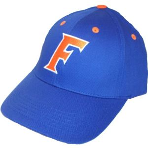 Florida Gators Baseball Hat