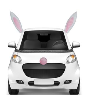 Easter Bunny Car Decorating Kit
