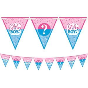 Girl or Boy Gender Reveal Pennant Banner