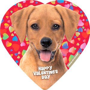 Cuddly Puppy Heart Box of Chocolates 4pc