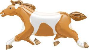 Painted Pony Balloon