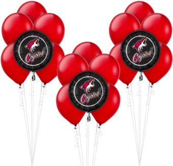 Arizona Coyotes Balloon Kit