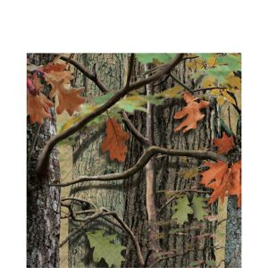 Hunting Camo Lunch Napkins 16ct