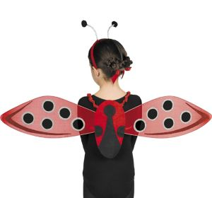 Child Ladybug Accessory Kit