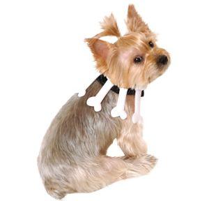 Bone Dog Collar