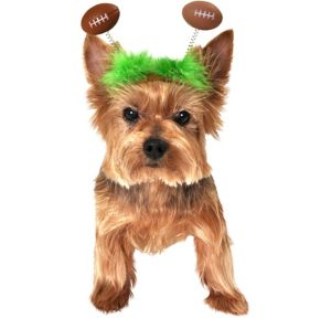 Football Bobble Dog Headpiece