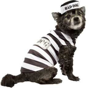 Bad Dog Prisoner Dog Costume