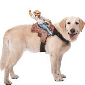 Ride On Cowboy Dog Costume