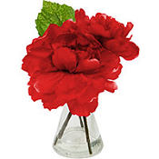 Red Rose in a Glass Vase