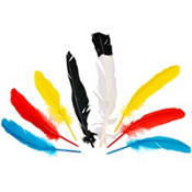 Native American Bag of Feathers 8ct