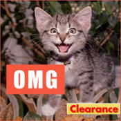 OMG Lolcats Magnet