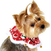 Holiday Print Christmas Dog Collar
