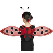 Child Ladybug Costume Kit