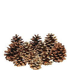 Cinnamon-Scented Pinecones 16ct