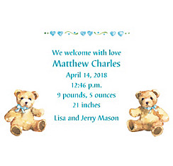 Custom Teddy Bears with Blue Birth Announcements