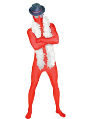 Adult Fab Fedora Patriotic Morphsuit Costume Set