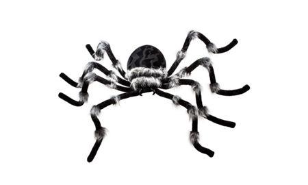 quick shop - Halloween Spider