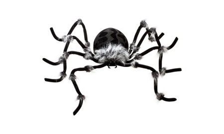 spiders - Halloween Spiders