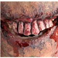 Walking Dead Bloody Teeth Prosthetic Makeup Kit