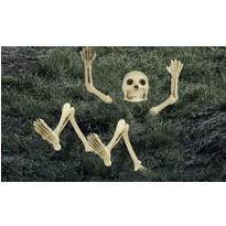 Light-Up Lawn Skeleton Decoration