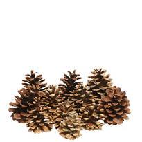 Cinnamon Scented Pine Cones 16ct