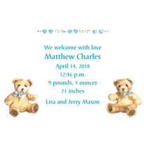 Teddy Bears with Blue Custom Birth Announcements