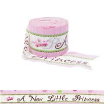 Little Princess Baby Shower Printed Crepe Streamer 30ft