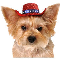 Red Sequin Dog Cowboy Hat