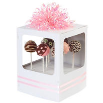 Cake Pop Boxes 2ct