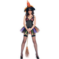 Adult Spider Witch Costume