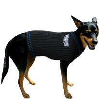 Philadelphia Eagles NFL Dog Sweater