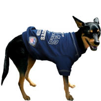 Dallas Cowboys NFL Dog T-Shirt