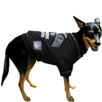 Oakland Raiders NFL Dog T-Shirt