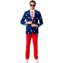 Adult Stars and Stripes Print Suit