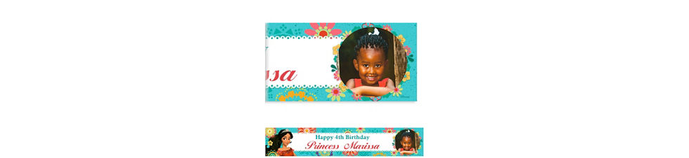 Custom elena of avalor invitation elena of avalor party supplies custom elena of avalor photo banner filmwisefo
