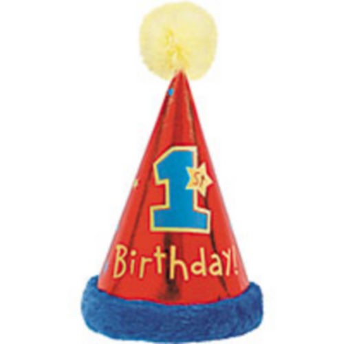 1st Birthday Party Hat With Faux Trim