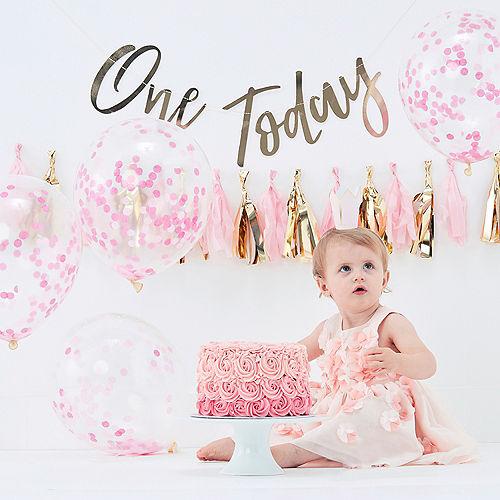 4c2c484f46f6 Pink Swan 1st Birthday Party Supplies