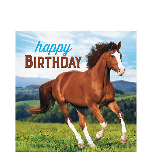 Wild Horse Happy Birthday Lunch Napkins 16ct