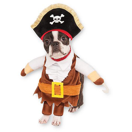 Walking Pirate Dog Costume